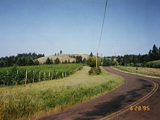 1994-1997 - Prior to House - no Cote Sud Vineyard